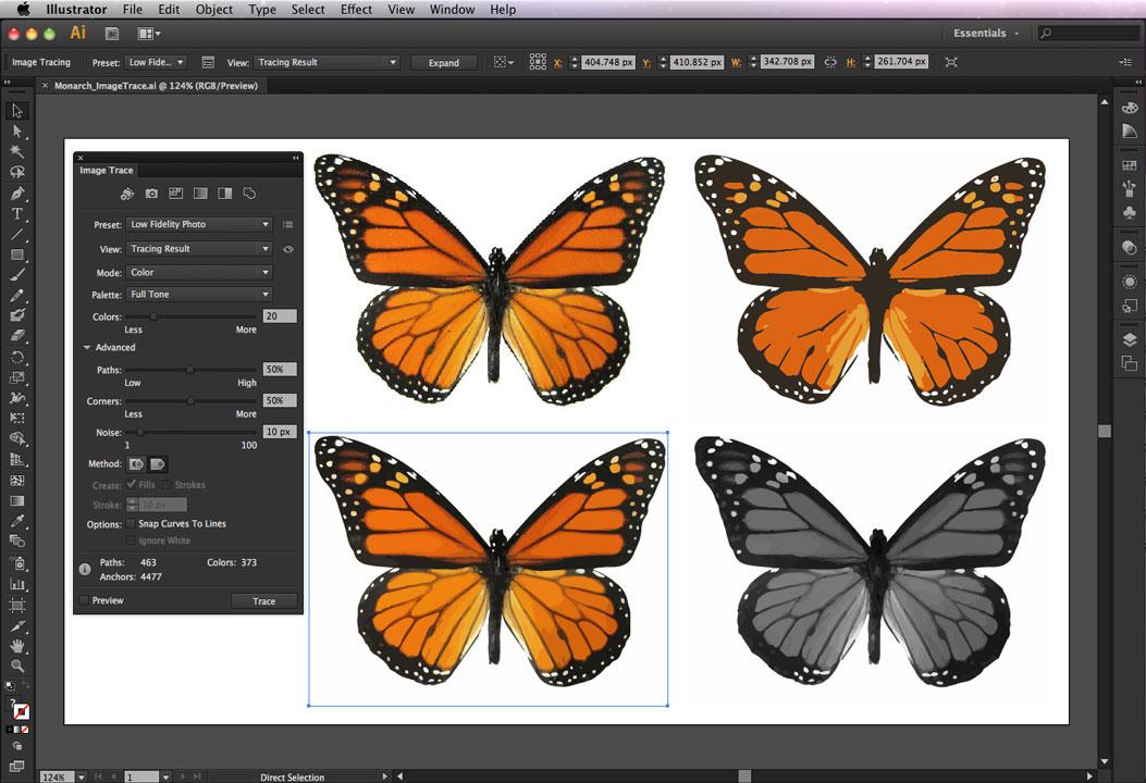 Chia sẻ toàn bộ giáo trình tự học Adobe Illustrator và Lightroom