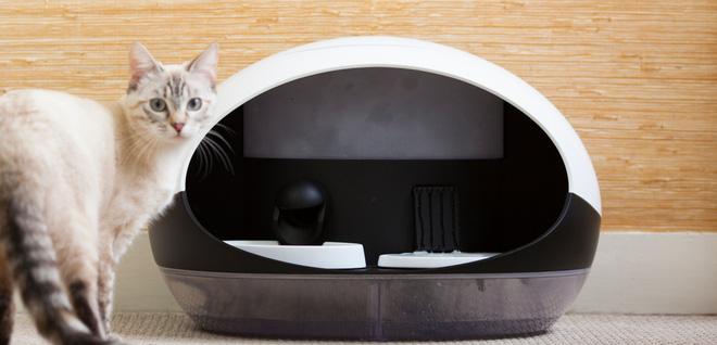 CES 2018: Máy cho thú cưng ăn thông minh có thể phân biệt được đâu là chó, đâu là mèo, theo dõi được cả chế độ ăn uống luôn