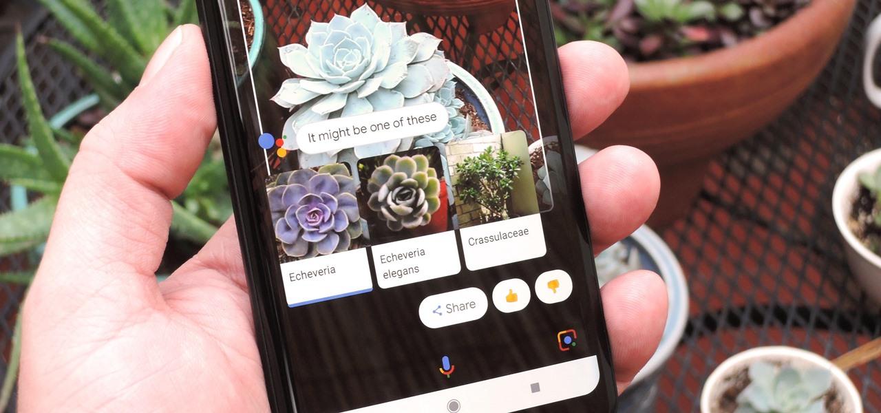 [Google I/O 2018] Google Lens sẽ được tích hợp trực tiếp vào ứng dụng camera của smartphone Android trong tương lai gần