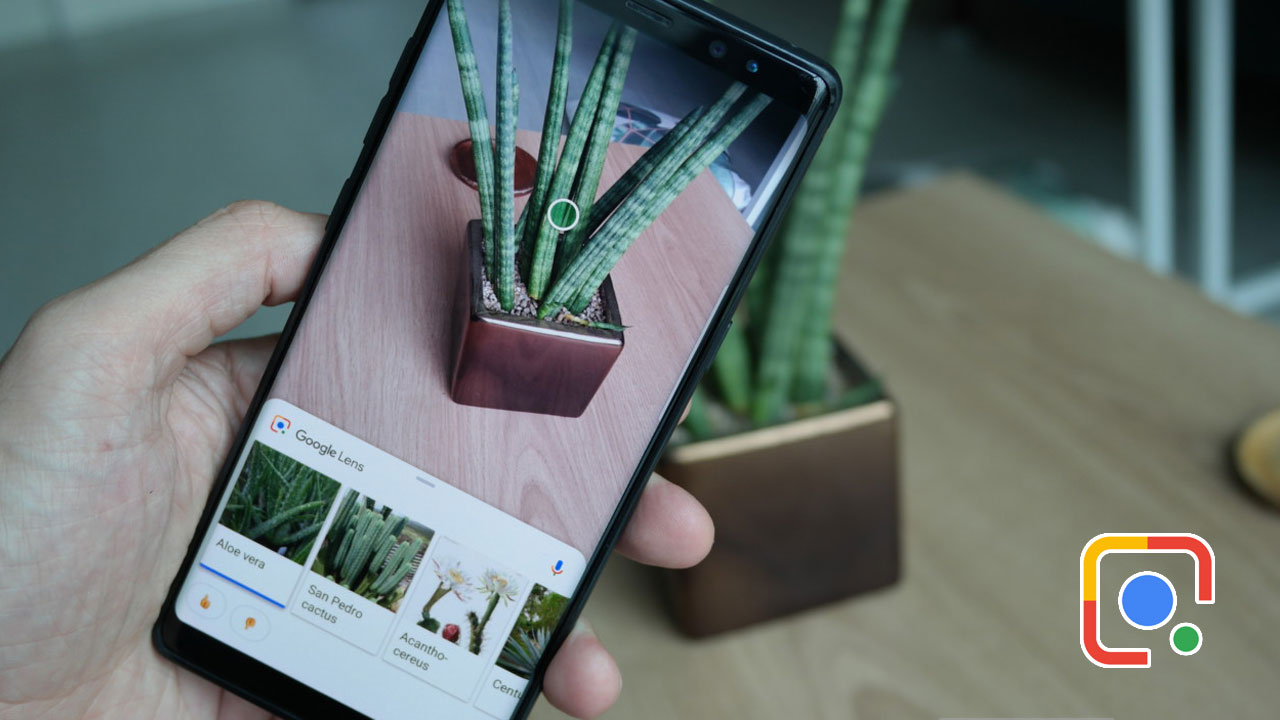 Xiaomi tích hợp Google Lens vào ứng dụng camera trên MIUI