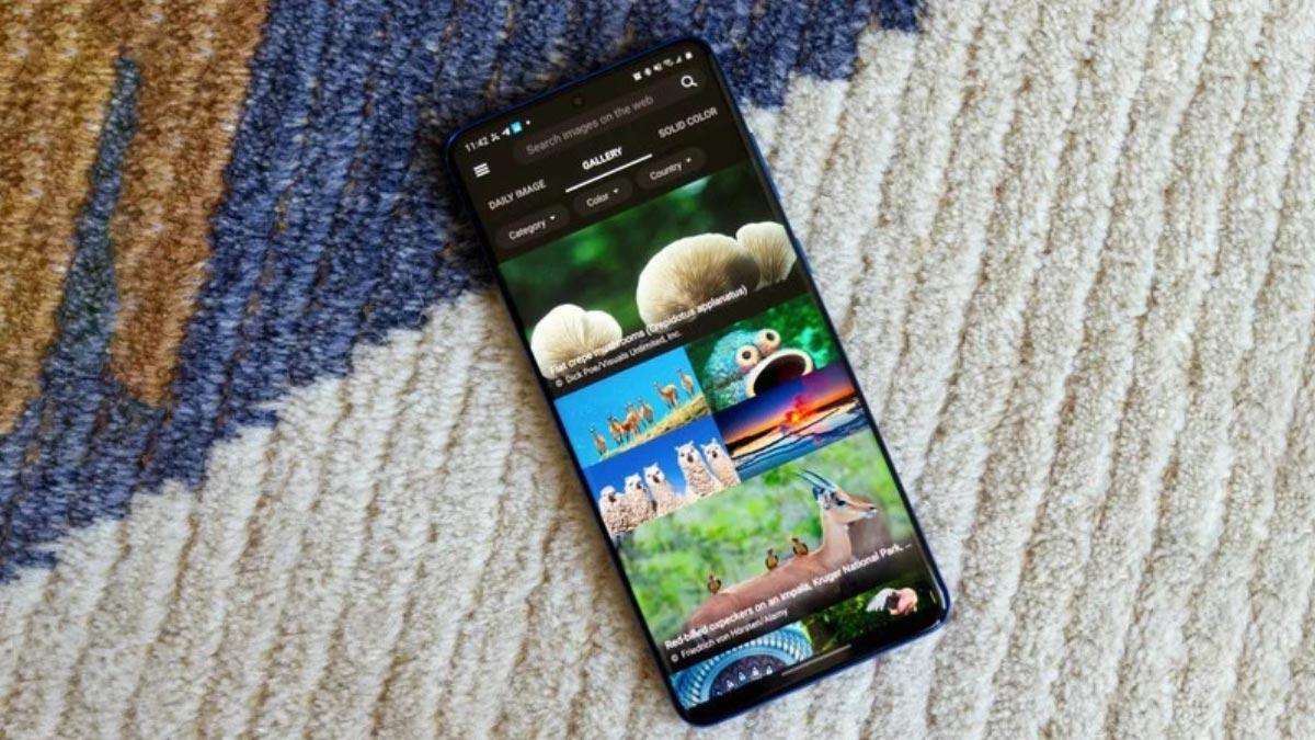 Microsoft phát hành ứng dụng Bing Wallpapers miễn phí cho người dùng Android